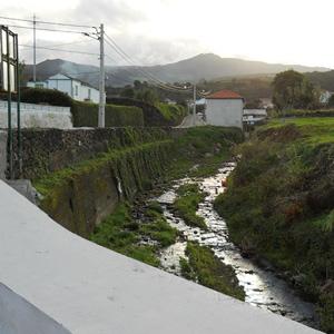 Limpeza e Renaturalização da Ribeira da Agualva